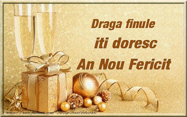 Felicitari frumoase de Anul Nou pentru Fin | Draga finule iti urez un An Nou Fericit