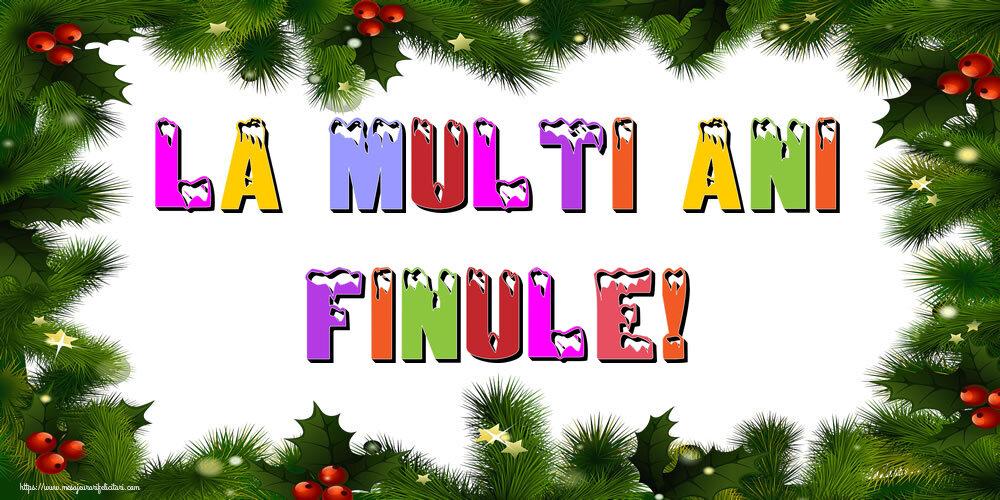 Felicitari frumoase de Anul Nou pentru Fin | La multi ani finule!
