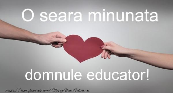 Felicitari frumoase de buna seara pentru Educator | O seara minunata domnule educator!