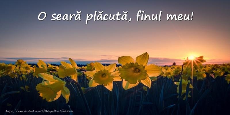 Felicitari frumoase de buna seara pentru Fin | Flori: O seară plăcută, finul meu!