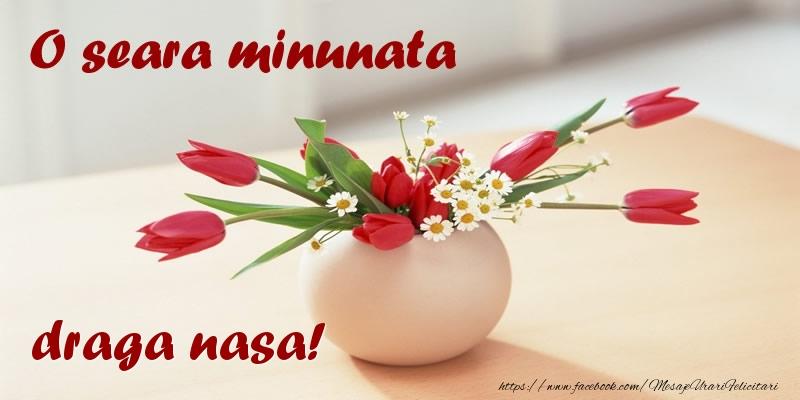 Felicitari frumoase de buna seara pentru Nasa | O seara minunata draga nasa!