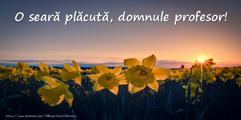 Felicitari frumoase de buna seara pentru Profesor | Flori: O seară plăcută, domnule profesor!