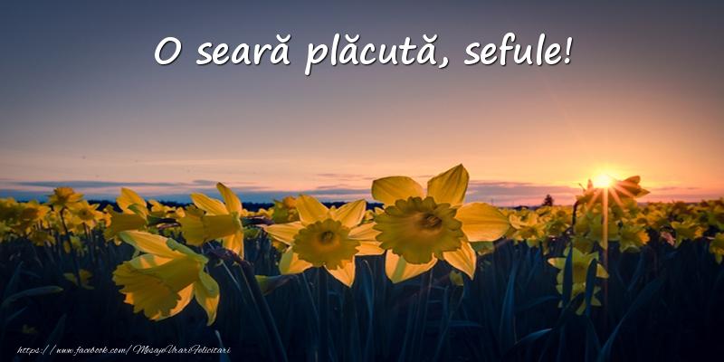Felicitari frumoase de buna seara pentru Sef | Flori: O seară plăcută, sefule!