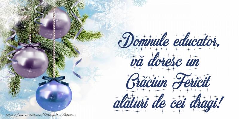 Felicitari frumoase de Craciun pentru Educator | Domnule educator, vă doresc un Crăciun Fericit alături de cei dragi!
