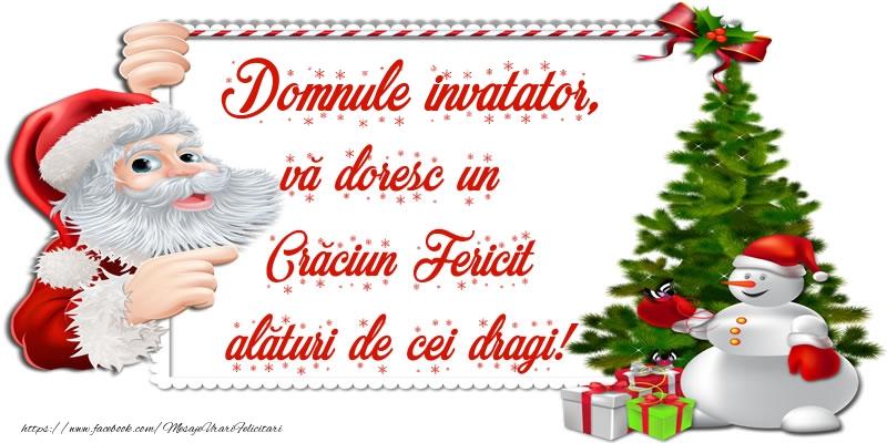 Felicitari frumoase de Craciun pentru Invatator | Domnule invatator, vă doresc un Crăciun Fericit alături de cei dragi!