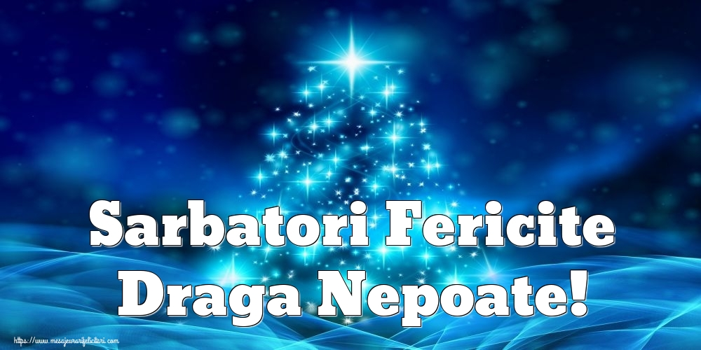 Felicitari frumoase de Craciun pentru Nepot | Sarbatori Fericite draga nepoate!