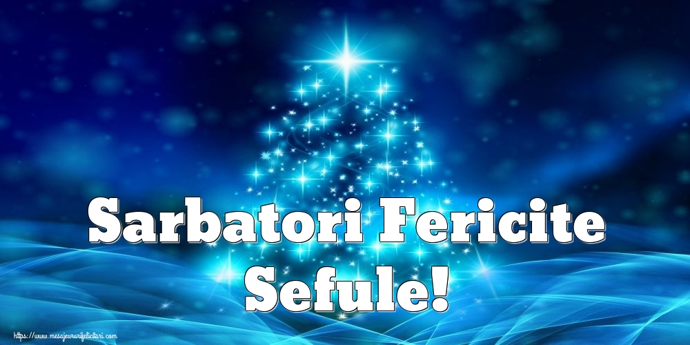 Felicitari frumoase de Craciun pentru Sef | Sarbatori Fericite sefule!