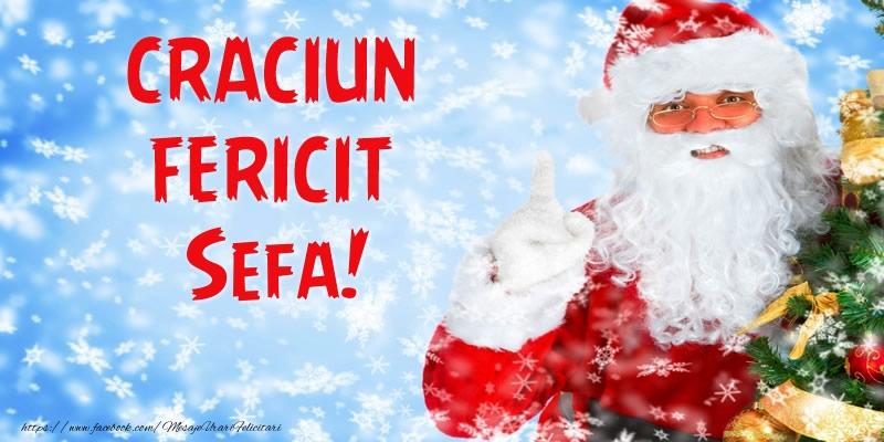 Felicitari frumoase de Craciun pentru Sefa | Craciun Fericit sefa!