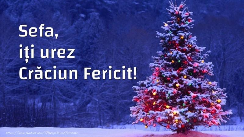 Felicitari frumoase de Craciun pentru Sefa | Sefa, iți urez Crăciun Fericit!