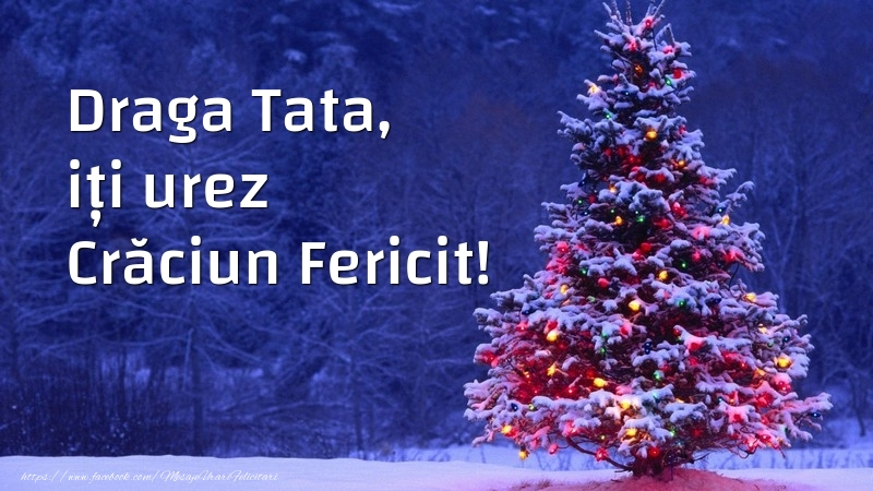 Felicitari frumoase de Craciun pentru Tata | Draga tata, iți urez Crăciun Fericit!