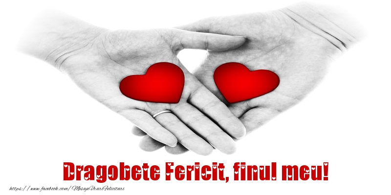 Felicitari frumoase de Dragobete pentru Fin | Dragobete Fericit, finul meu!