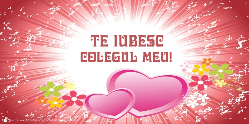 Felicitari frumoase de dragoste pentru Coleg | Te iubesc colegul meu!
