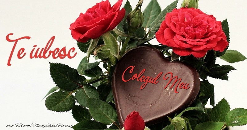 Felicitari frumoase de dragoste pentru Coleg | Te iubesc, colegul meu!