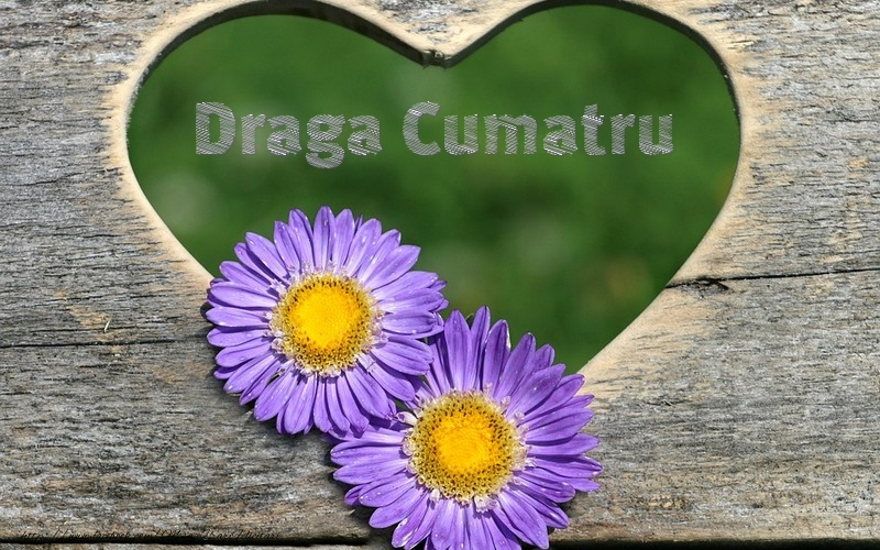 Felicitari frumoase de dragoste pentru Cumatru | Draga cumatru
