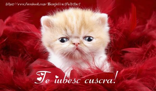 Felicitari frumoase de dragoste pentru Cuscra | Te iubesc cuscra!