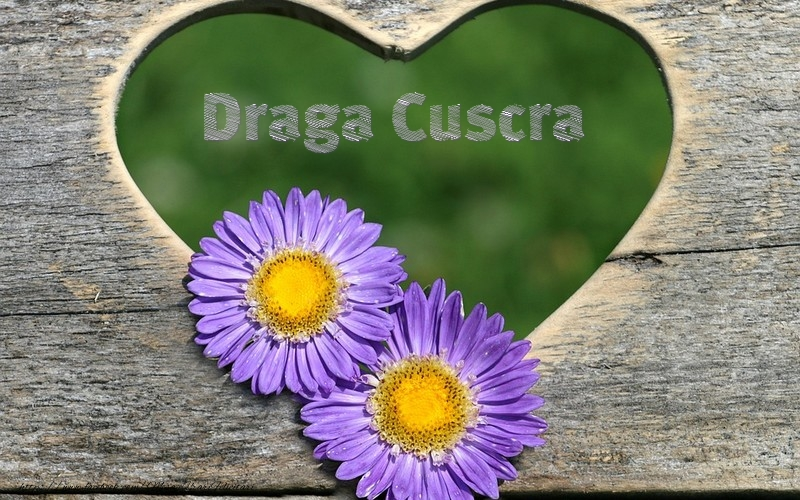Felicitari frumoase de dragoste pentru Cuscra | Draga cuscra