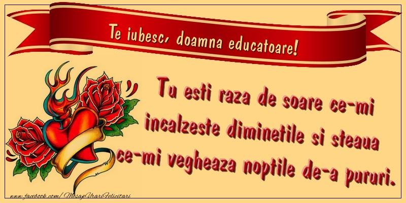 Felicitari frumoase de dragoste pentru Educatoare | Te iubesc, doamna educatoare. Tu esti raza de soare ce-mi incalzeste diminetile si steaua ce-mi vegheaza noptile de-a pururi.