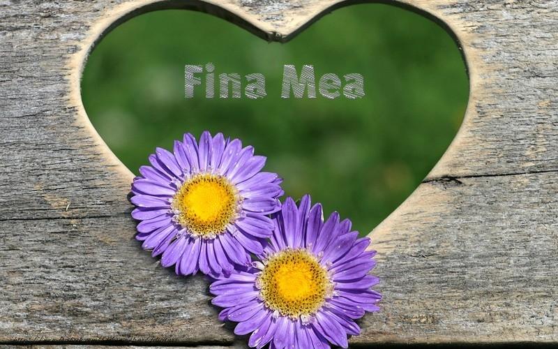 Felicitari frumoase de dragoste pentru Fina   Fina mea