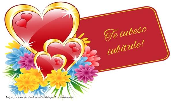 Felicitari frumoase de dragoste pentru Iubit | Te iubesc iubitule!