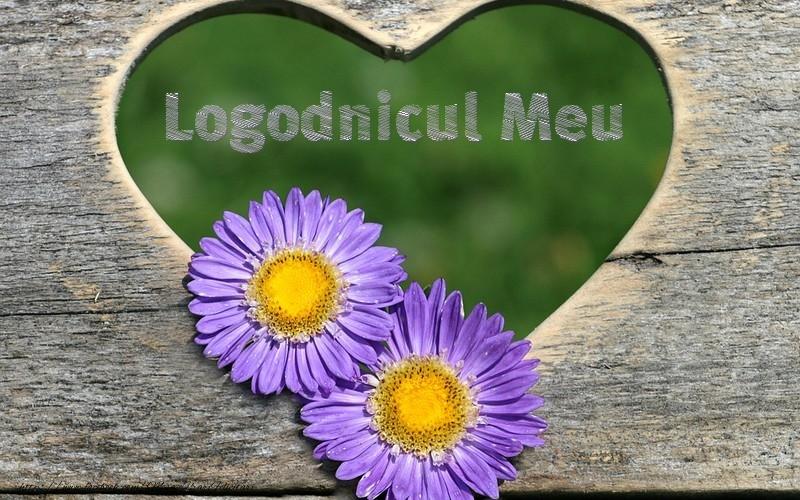 Felicitari frumoase de dragoste pentru Logodnic | Logodnicul meu