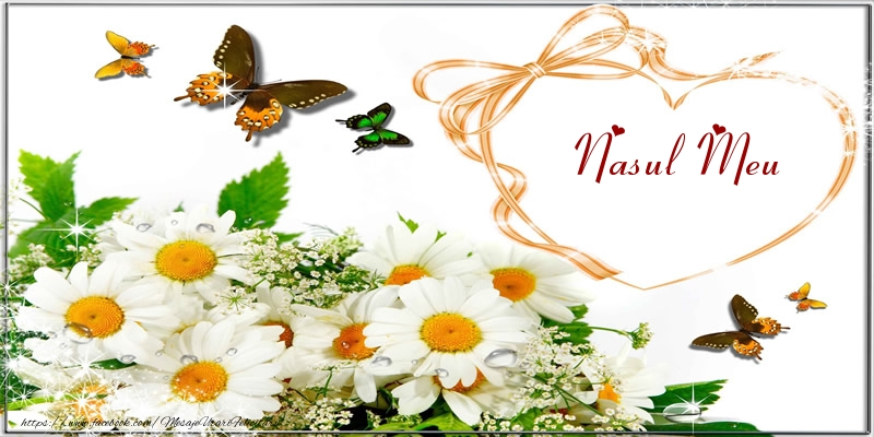 Felicitari frumoase de dragoste pentru Nas | I love you nasul meu!