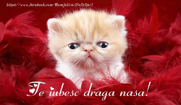 Felicitari frumoase de dragoste pentru Nasa | Te iubesc draga nasa!