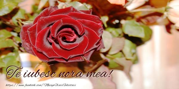 Felicitari frumoase de dragoste pentru Nora | Te iubesc nora mea!