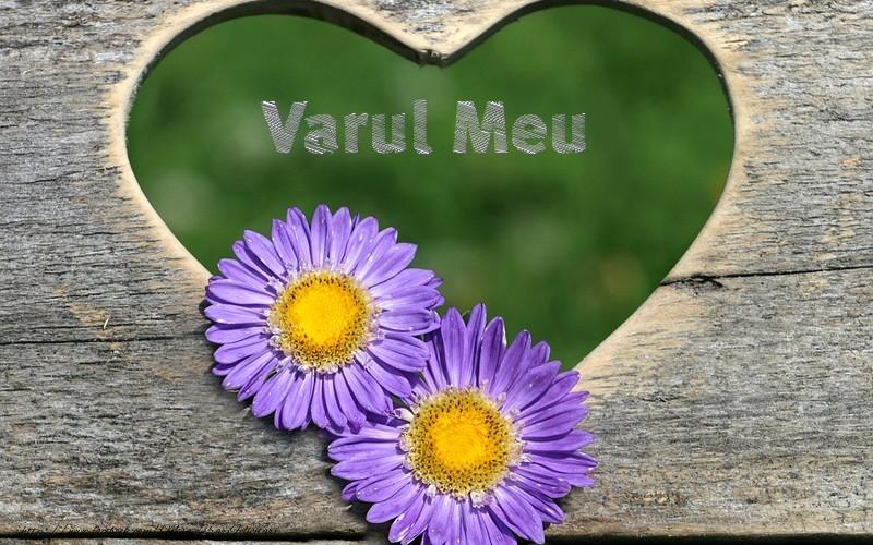Felicitari frumoase de dragoste pentru Verisor | Varul meu