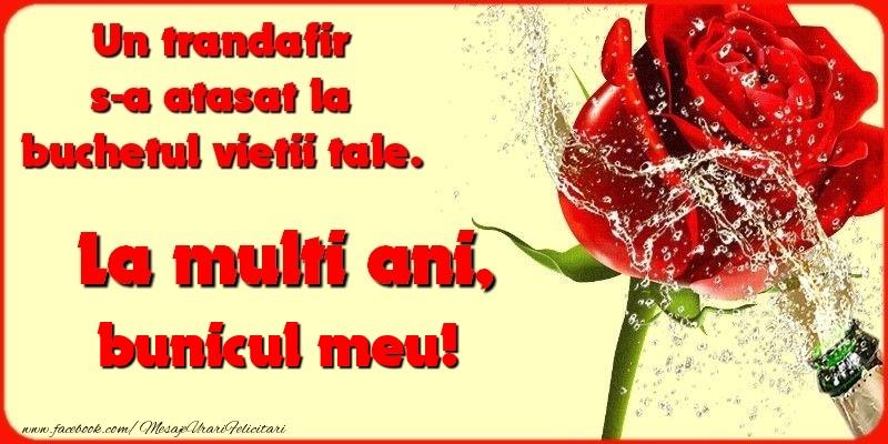 Felicitari frumoase de la multi ani pentru Bunic   Un trandafir s-a atasat la buchetul vietii tale. bunicul meu
