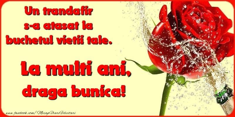 Felicitari frumoase de la multi ani pentru Bunica   Un trandafir s-a atasat la buchetul vietii tale. draga bunica