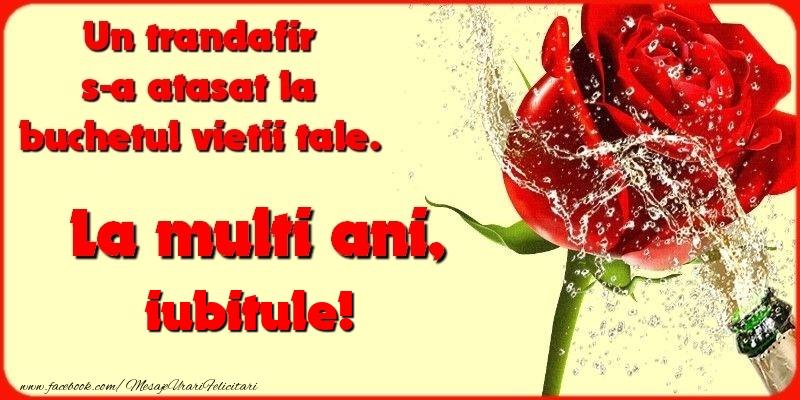 Felicitari frumoase de la multi ani pentru Iubit   Un trandafir s-a atasat la buchetul vietii tale. iubitule