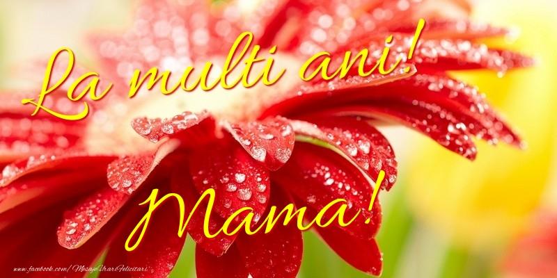 Felicitari frumoase de la multi ani pentru Mama | La multi ani! mama