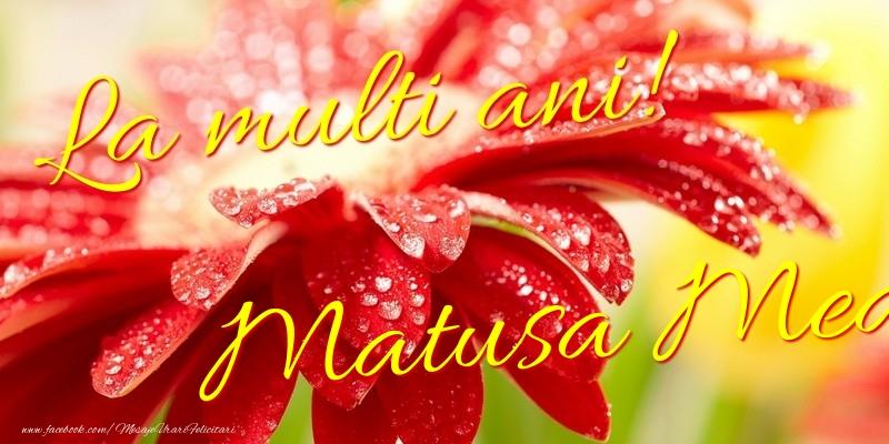 Felicitari frumoase de la multi ani pentru Matusa | La multi ani! matusa mea