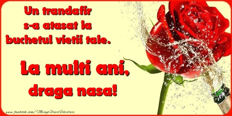 Felicitari frumoase de la multi ani pentru Nasa | Un trandafir s-a atasat la buchetul vietii tale. draga nasa
