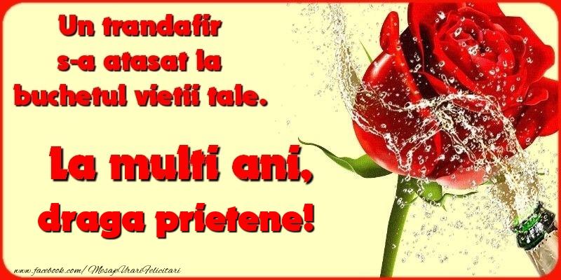 Felicitari frumoase de la multi ani pentru Prieten   Un trandafir s-a atasat la buchetul vietii tale. draga prietene