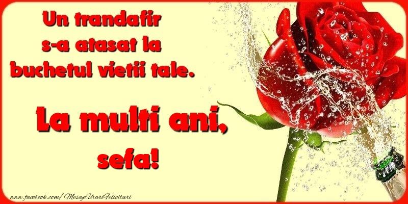 Felicitari frumoase de la multi ani pentru Sefa | Un trandafir s-a atasat la buchetul vietii tale. sefa