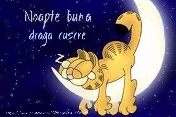 Felicitari frumoase de noapte buna pentru Cuscru | Noapte buna draga cuscre