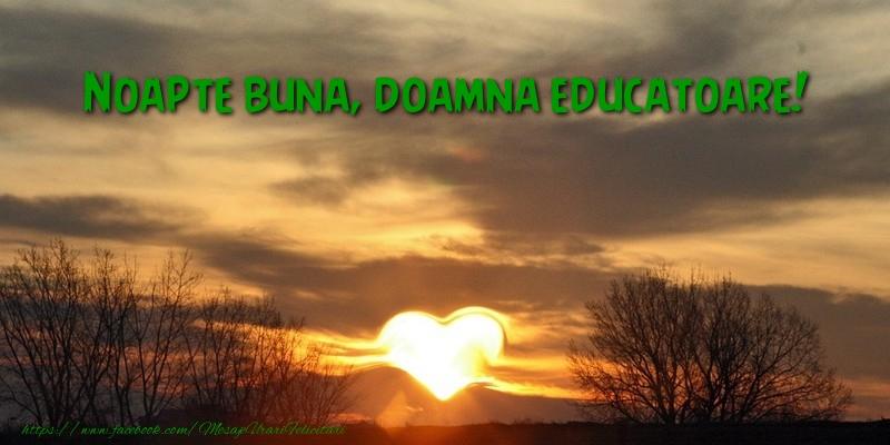 Felicitari frumoase de noapte buna pentru Educatoare | Noapte buna doamna educatoare
