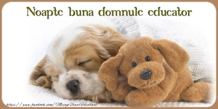 Felicitari frumoase de noapte buna pentru Educator | Noapte buna domnule educator