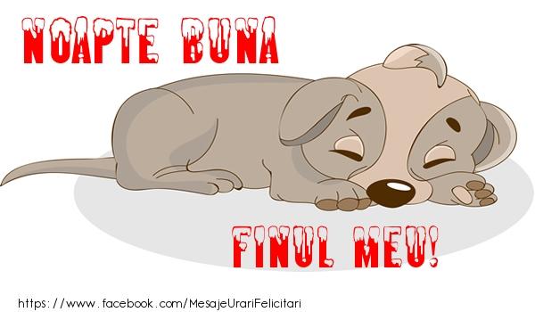 Felicitari frumoase de noapte buna pentru Fin | Noapte buna finul meu!