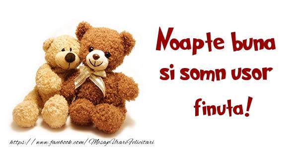 Felicitari frumoase de noapte buna pentru Fina | Noapte buna si Somn usor finuta!