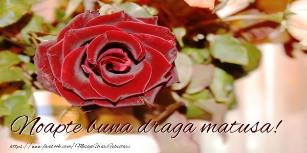 Felicitari frumoase de noapte buna pentru Matusa | Noapte buna draga matusa!