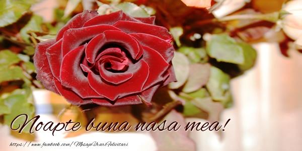 Felicitari frumoase de noapte buna pentru Nasa | Noapte buna nasa mea!