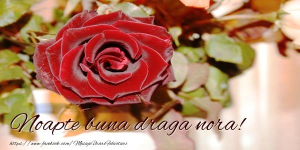 Felicitari frumoase de noapte buna pentru Nora | Noapte buna draga nora!