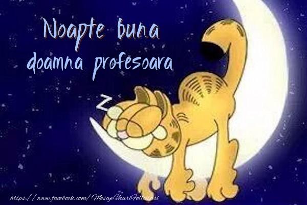Felicitari frumoase de noapte buna pentru Profesoara | Noapte buna doamna profesoara