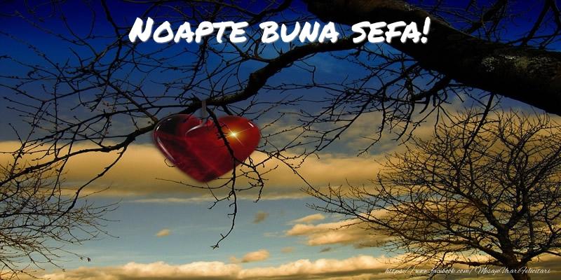 Felicitari frumoase de noapte buna pentru Sefa | Noapte buna sefa!