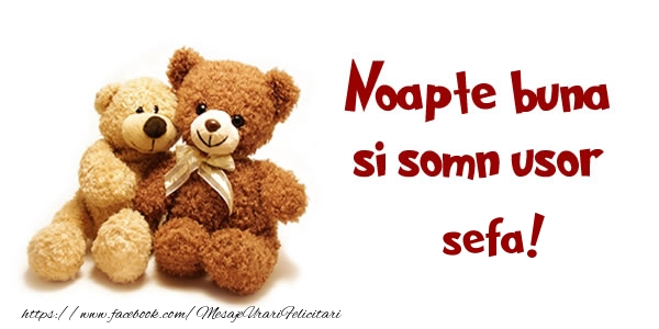 Felicitari frumoase de noapte buna pentru Sefa | Noapte buna si Somn usor sefa!