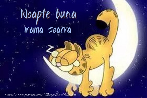 Felicitari frumoase de noapte buna pentru Soacra | Noapte buna mama soacra