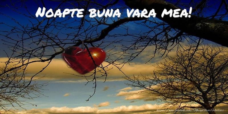 Felicitari frumoase de noapte buna pentru Verisoara | Noapte buna vara mea!