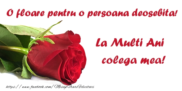 Felicitari frumoase de zi de nastere pentru Colega | O floare pentru o persoana deosebita! La multi ani colega mea!